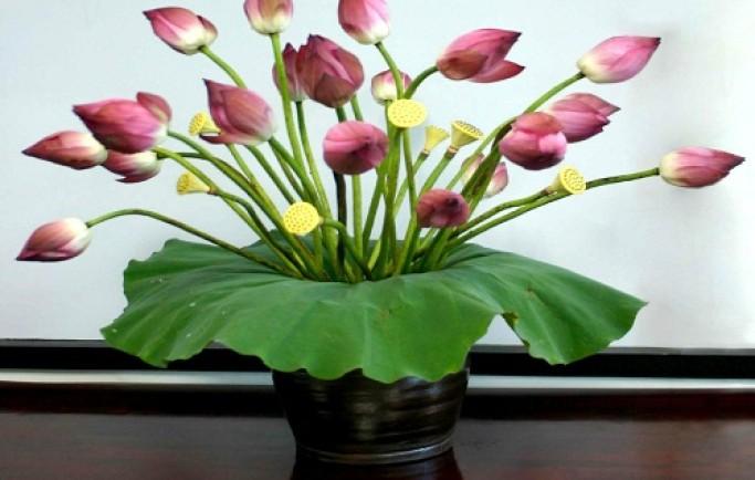 Bày 5 loại hoa này trong nhà không sớm thì muộn, kiểu gì cũng giàu