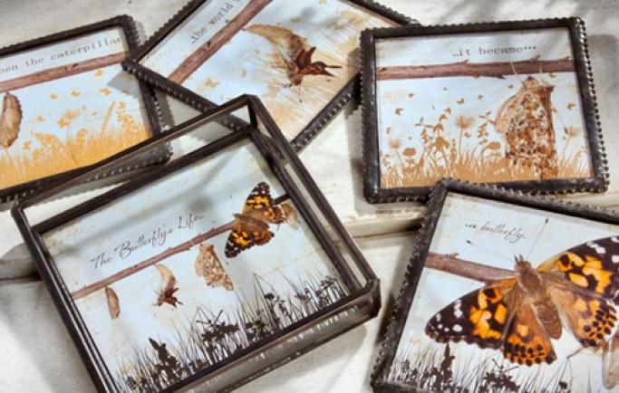 Làm duyên với trang trí nhà được lấy cảm hứng từ các chú bướm cực thú vị (P2)