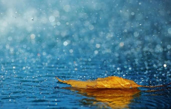 Nằm mơ thấy mưa là điềm gì, đánh đề con gì chắc ăn nhất?