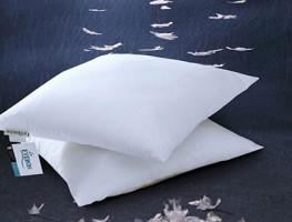 Ruột gối xuất khẩu Everon được khách hàng tin dùng